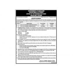 LDA cum Computer Assistant - State Government Jobs Nagaland