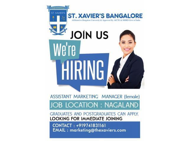 Job Vacancy for Assistant Marketing Manager in Nagaland